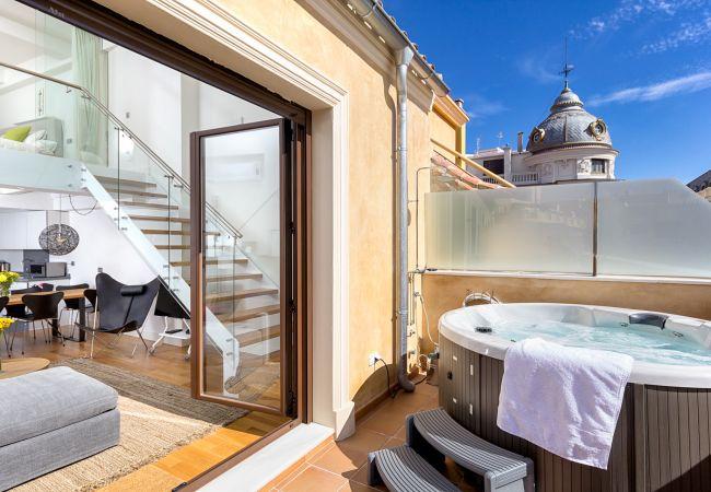 Holiday apartment in Malaga city